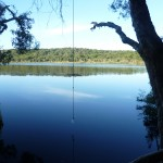 Rope swing at Ocean Lake, near Eliza Fraser Lodge eco-tourism on beautiful Fraser Island, Australia
